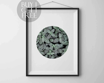 Plant print Leaves printable Modern poster Circle print Nature Photography Instant download Printable art Wall art Nature poster Modern art