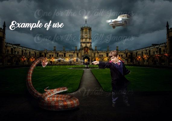 Harry Potter Inspired Digital Backdrop Background Etsy