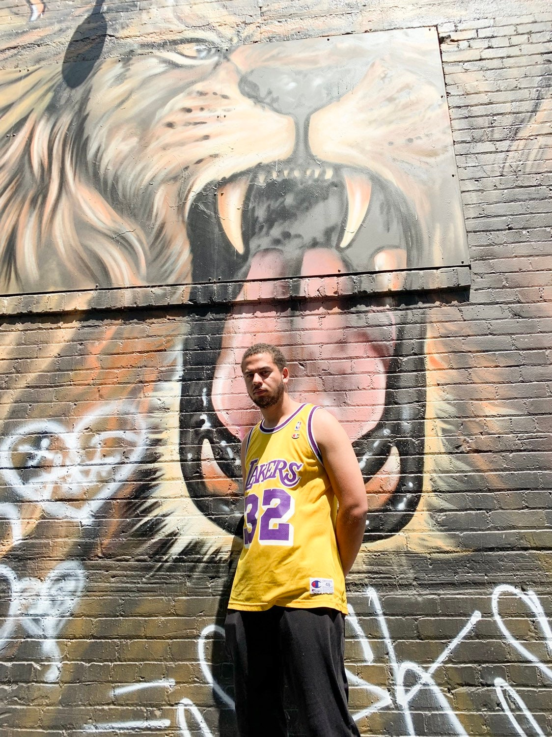 release date: 50c50 1c637 Champion Jersey Magic Johnson Los Angeles Lakers