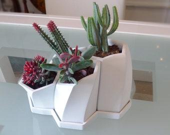 planter /planteur saucer nest d 3d bee/print/design