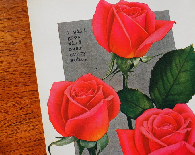 Featured listing image: I will grow wild over every ache. Vintage Rose
