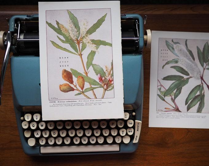 Featured listing image: Set of 2 Vintage Botanical Prints (1950)