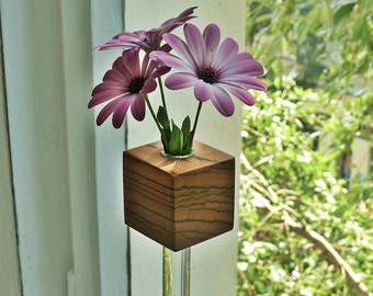 Window vase Zebrano Flower vase flower Vase
