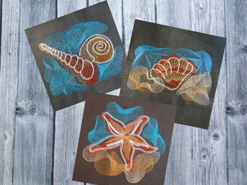 seastar 4x4 hoop sea designs marine animals sea animals cockle nautilus Embroidery design set