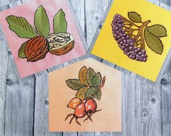 Embroidery file set Herbstfruechte2, Autumn fruit, autumn foliage, 10x10 frame, Herbstdeko embroidery,