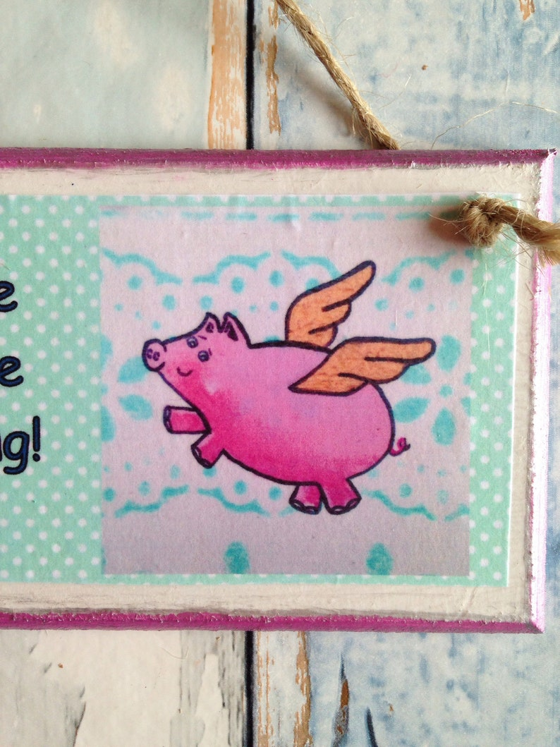 Flying pig gift pig lover pig gift believe you are amazing  a1127af92b8db