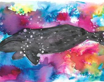 Gray Whale Print