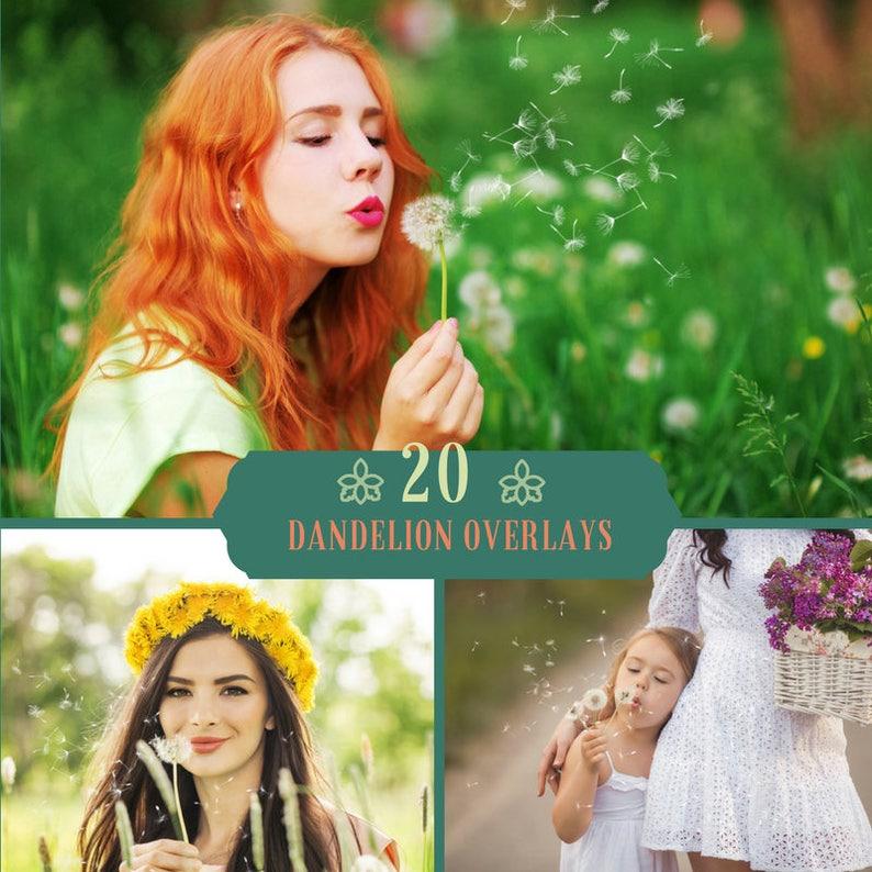 20 Dandelion Overlay, Photoshop Overlays, Dandelion Flowers Overlays,  Digital Backdrop, Magic Overlays ,Spring Overlays, Wedding, Forest PNG