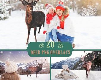 20 Deer Reindeer Overlays, Photoshop Overlays, Real Deer overlay, Buck, Christmas, Digital backdrop,Stag ,  Animal overlays, Snow, Reindeer