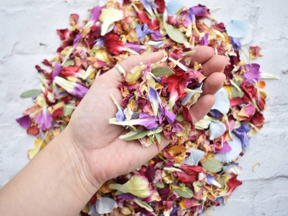 Pastel WEDDING CONFETTI Real Dried Large Rose Petals Pack Pockets Biodegradable