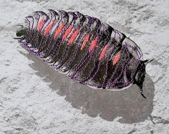 Entomojoly - scarabée, entomologie, insecte brodé, piqué libre, cabinet de curiosités, illustration brodée, décoration