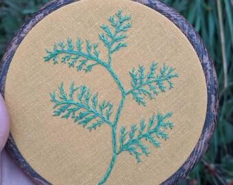 Western Redcedar Tree Branch Hand Embroidery Hoop Art