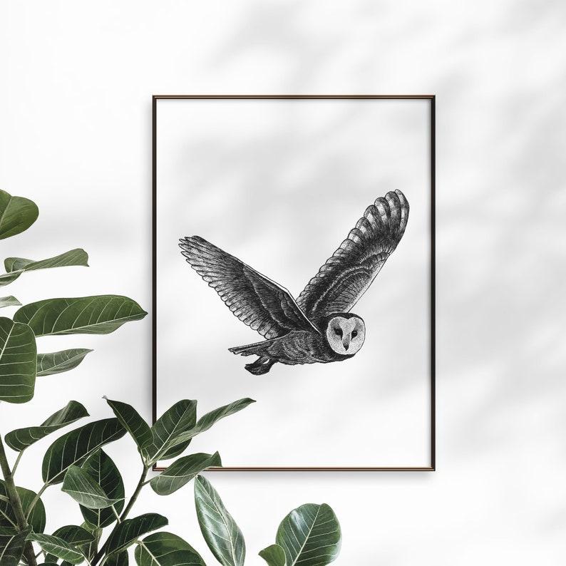 Owl art print  Dotwork stipple illustration of Owl  Hand image 0
