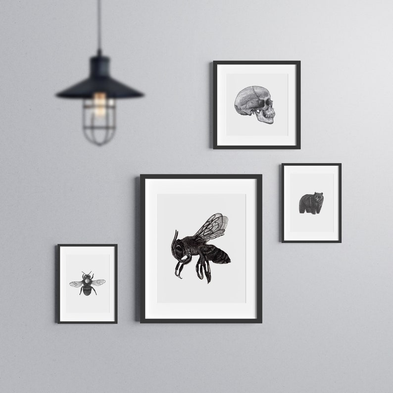 Bee art print  Dotwork stipple illustration of Bee  Hand image 0