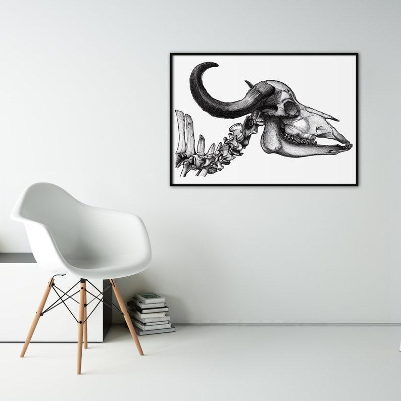 Buffalo Skull art print  Dotwork stipple illustration of image 0