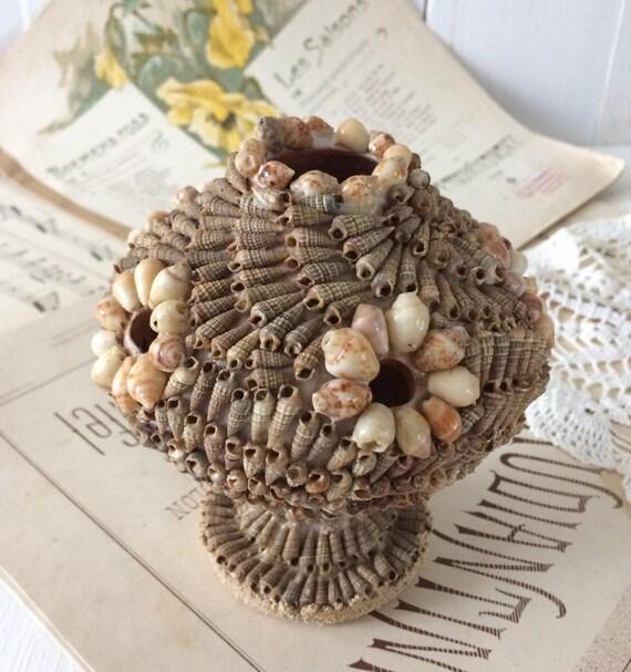 Seashell Vase 1900s French Antique Style Rocaille Vase Etsy
