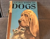 The Big Book of Dogs 1952 Edition, Text by Felix Sutton, Illustrated by Percy Leason