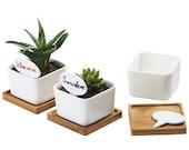 3.35 quot Ceramic Succulent Pot, Ceramic Planter Set, Cactus Planter Container, Square Pot, Bamboo Tray, Plants Not Included, 1, Set of 2 or 3