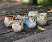 Owl Planter, Owl Succulent Pot,Mini Owl Planter Set, Small Ceramic Planter, Cactus Planter Container, Plant Not Included, One, Set of 3 or 6