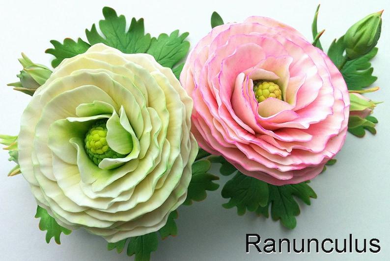 Ranunculus and Poppy Petal Veiner