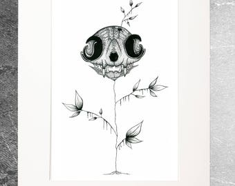 Limited edition reproduction catskull drawing