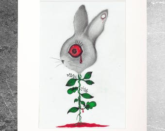 Drawing Illustration limited edition rabbit