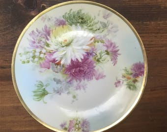 Royal Rudolstadt China Plate.  Handpainted Prussia Plate.  Antique Decorator Plate.