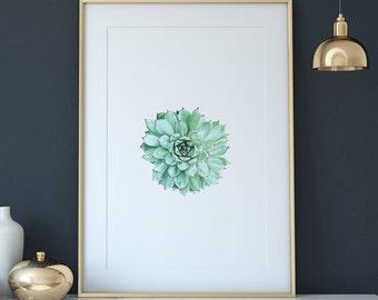 Succulent watercolor digital print - succulent art print - succulent poster - cactus print - cactus wall art - modern art #p16