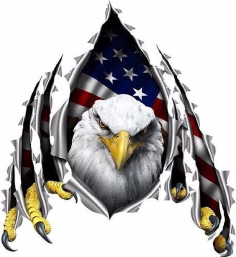 American Flag Eagle Rip Decal Camper Rv Motor Home Mural Etsy