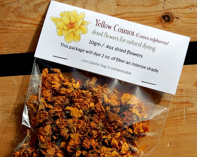 Yellow Cosmos dried flowers