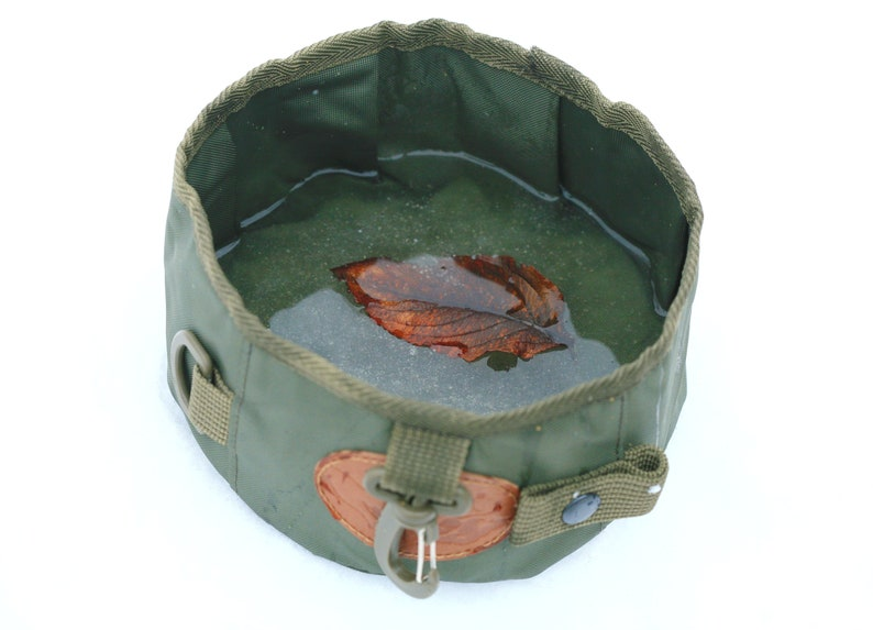 pet bowl dog water bowl German Wirehaired Bowl personalized dog bowl water bowl pointer dog bowl pet travel bowl food bowl dog bowl