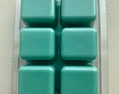 Soy Wax Melts, Mint Green, Rosemary Sage scented wax melts, aroma therapy, calming scent