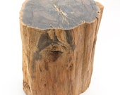 Permian petrified wood trunk from Paraguay - 19 x 14 x 24 cm - Weight: 12.5 kg.