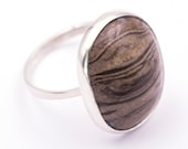 925 silver ring with fossilized wood - Measurements gem 21.6 x 18.1 mm. - Weight: 5.22 grams.