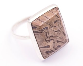 925 silver ring with fossilized wood - Measurements gem 21.4 x 17.9 mm. - Weight: 6.08 grams.