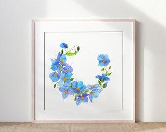 Himalayan poppy crown - Original watercolor - format 30/30cm