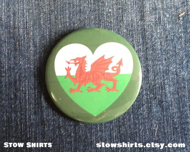 Irish Air Corps Roundal Lapel Pin Badge Gift