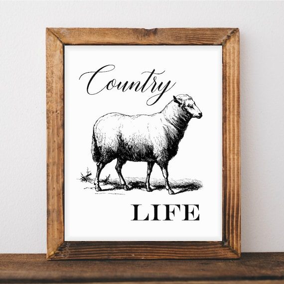 50 Farmhouse Style Gift Ideas From Etsy: Wall Décor Farmhouse Style Chic Kitchen Print Sheep Art