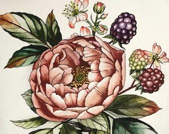 Rose and blackberries