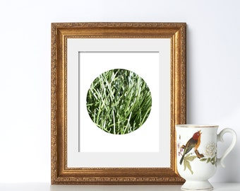 Grass Texture Circle Photo Digital Download Printable Art Green Art Organic Chef Art Nature Print Garden Decor Summer Print Bathroom Decor