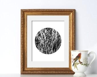 Black and White Noir Print Digital Download Printable Art Classic Design California Grass Texture Feels Like Summer Botanical Garden Clean