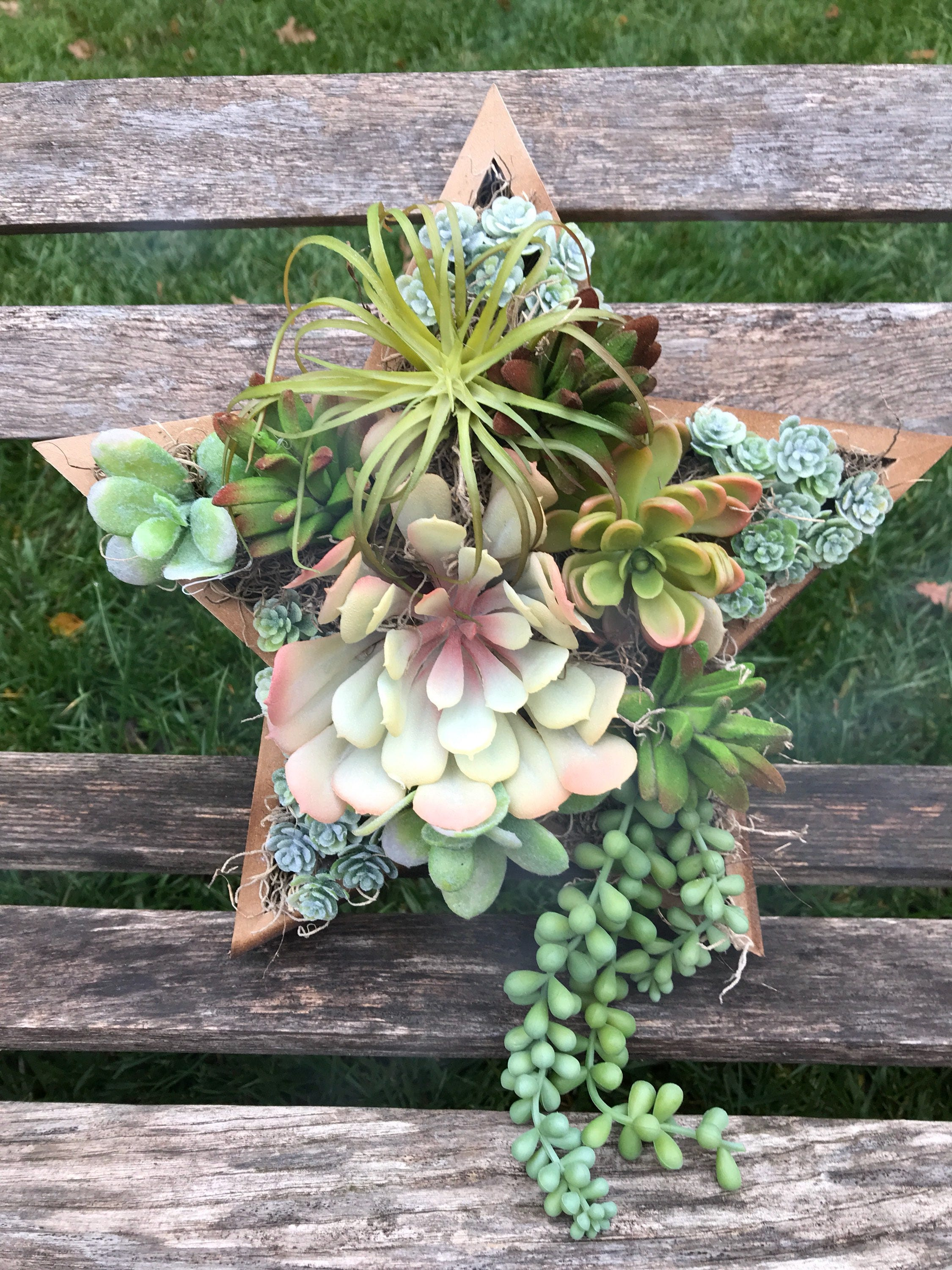 Artificial Succulent Star Shadow Box Wall Hanging Wall Etsy