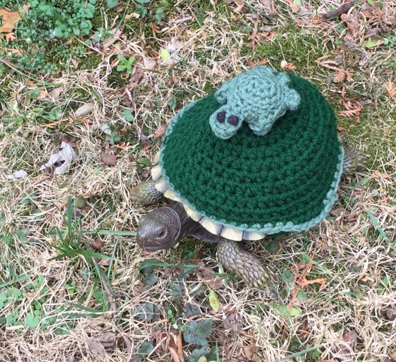 Hitchhiker Turtle Topper Tortoise Cozy Etsy