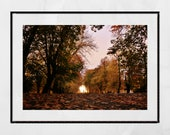 Autumn Fall Glasgow Queen's Park Photography Print