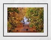Glasgow Queen's Park Autumn Fall Photography Print Poster Wall Art