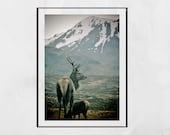 Stag Print, Glencoe Scotland, Stag Wall Art, Stag Photography Print, Wildlife Photography, Wildlife Photo, Wildlife Print, Stag Gift, Decor