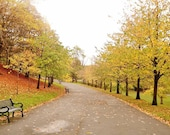 Kelvingrove Park Glasgow Photo, Glasgow Photography, Kelvingrove Park Print, Autumn Photography, Fall Photography, Autumn Decor, Fall Decor