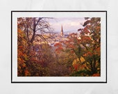 Queen's Park Glasgow, Glasgow South Side, Glasgow Photography, Glasgow Print, Glasgow Poster, Glasgow Wall Art, Autumn Photography, Fall