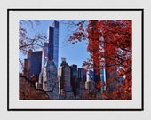 Central Park Photography, New York Photography Print, Central Park Photo, New York Poster, Central Park Print, Living Room Wall Print, Decor