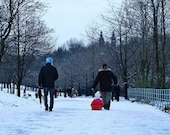 Kelvingrove Park Sledging In The Snow Photography Print